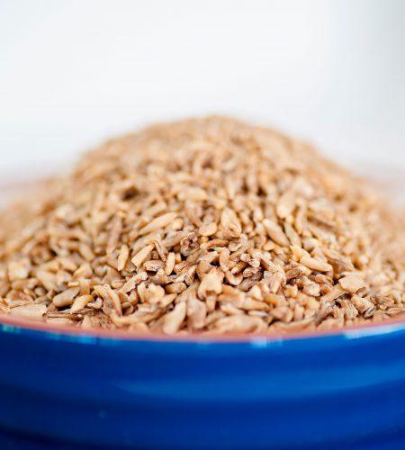 Barley-2-e1559706291429